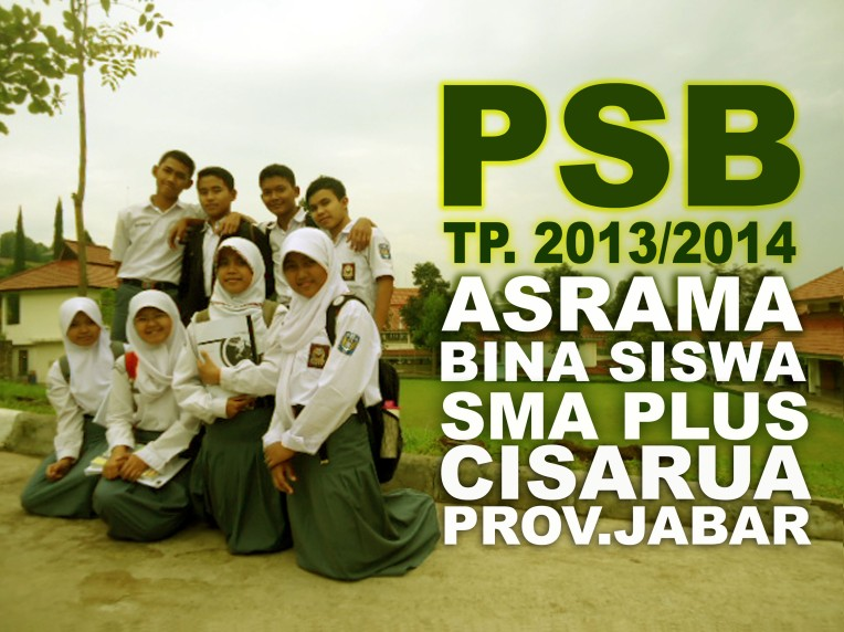 COVER-PSB-2013
